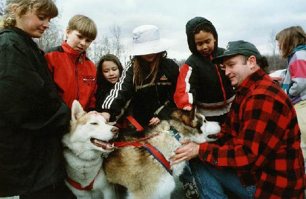 Siberian huskies with school students
