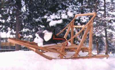 The sled that will be included with the Nanook running with the winning team in the 1999 Yukon Quest
