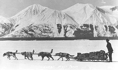 My uncle's father, George Ball, ran one of the 